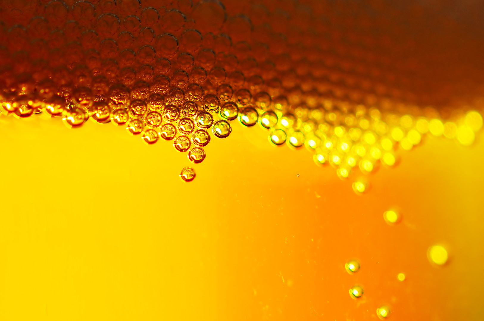 photo of beer close up